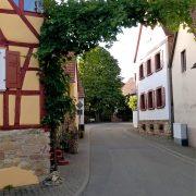 Umgebung_6_kurpfalz