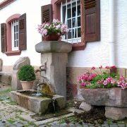Umgebung_5_kurpfalz